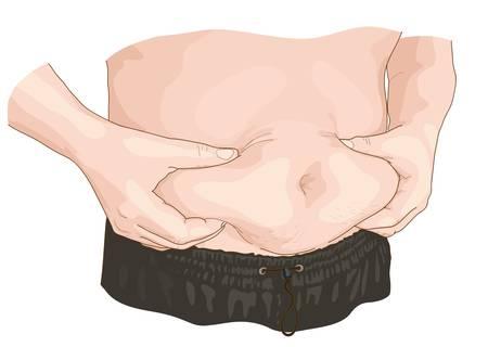 Fat gut. Vector illustration.