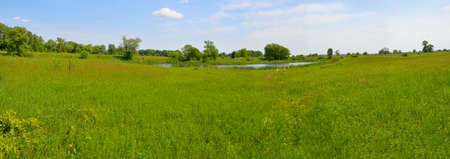 Panorama. Landscape with meadow and small lake. Plesia.