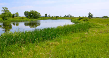 Landscape with the small lake. Plesia. Stock Photo