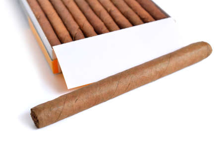 Cigars in the case. Isolated on white background.