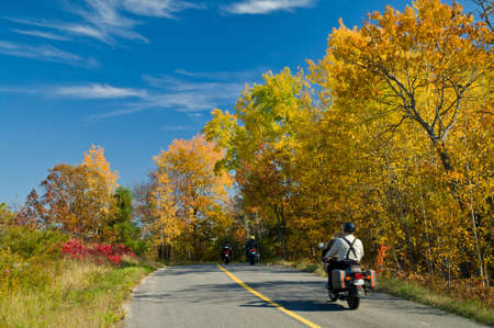 Motor bikers riding on a highway through a picturesque autumn landscape