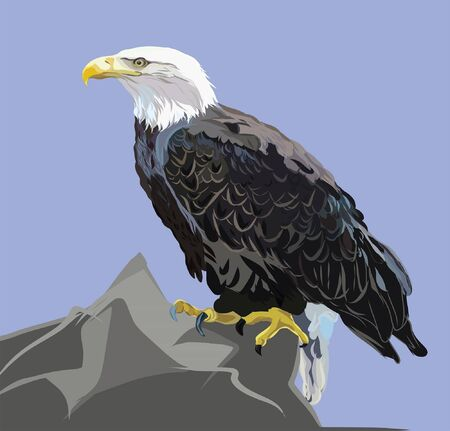 Illustration of a bald eagle sitting on a peak of a mountain against a blue sky Vector Illustration