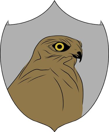 Sketch, image of a falcon on a shield. Suitable for postcards, logotype, emblems