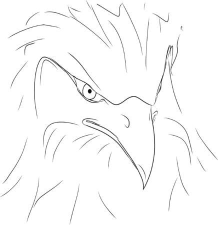 Sketch, contour of an eagle, black lines.  イラスト・ベクター素材