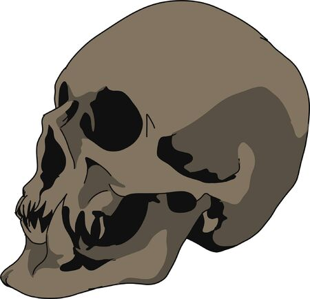 Sketch, profile of a human skull. Suitable for symbol, print, book, emblem