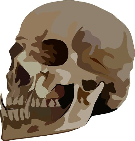 Sketch, profile of a human skull, with long fangs. Suitable for symbol, print, book, emblem, coloring