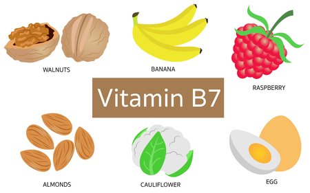 biotin: Vitamin B7 food sources on white background.
