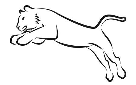 Vector Tiger jump on White Background. Illustration