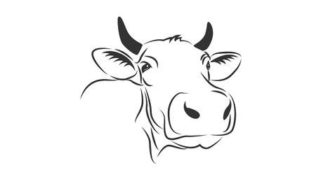 Cow emblem on white backdrop