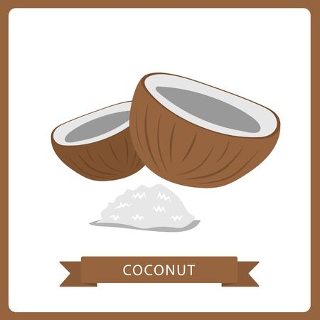 coconut isolated on white background. Bright vector illustration of colorful half and whole of juicy coconut. Fresh cartoon Imagens - 132823802