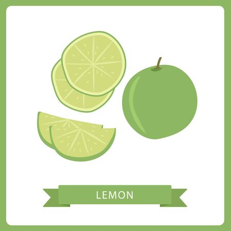 Vector lemon. Fresh lemon fruits, Thai lemon, vector illustrations. White background.