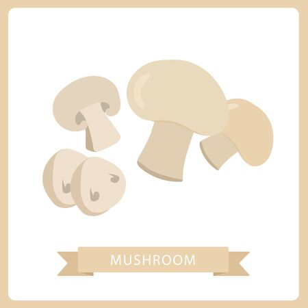 Cartoon vector icon illustration of mushroom. Fresh cartoon organic mushroom isolated on white background.