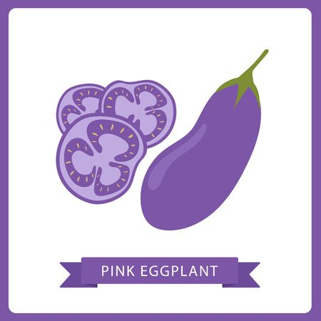 Pink eggplant vector icon isolated on white background. eggplant icon, flat style, vegetable vector illustration. Healthy food single object - isolated eggplant