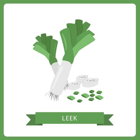 Vector leek Vegetable illustration, Healthy food design, Isolated on white background.