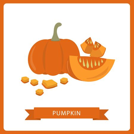 Pumpkins vector, Pumpkin isolated on white. Vector illustration