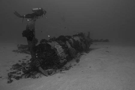 B+W Underwater Hawaii Artificial Reef photo
