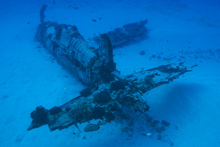 Hawaii WWII airplane wreck dive site