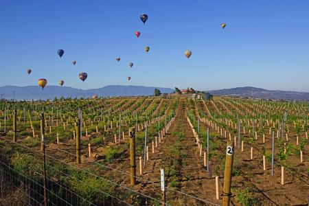 Hot Air Balloons at 2015 Temecula Balloon and Wine Festival