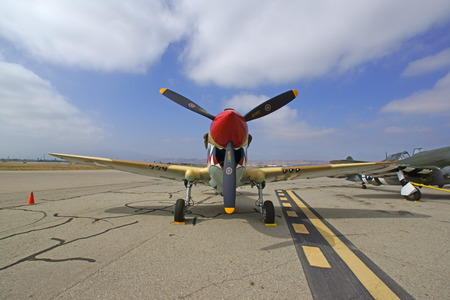 dog shark: P40 WWII Airplane at 2015 Air Show