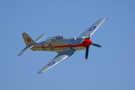 fury: Hawker Sea Fury WWII Airplane Flying