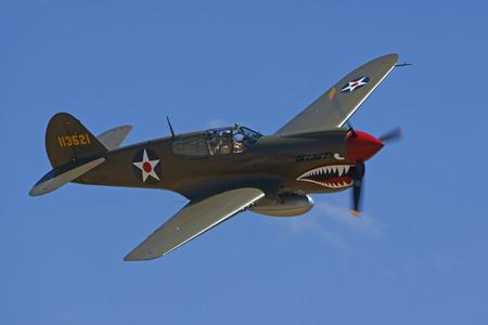 dog shark: WWII P40 Warhawk Flying