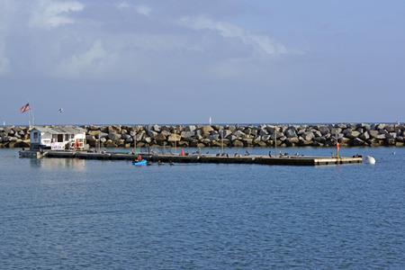 bait ball: Fuel dock at Dana Point Harbor Stock Photo
