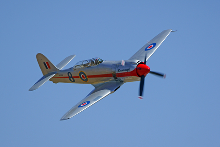 fury: Airplane Hawker Sea Fury WWII Fighter flying at Air Show