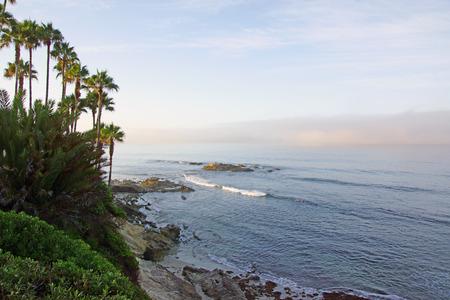 california beach: California beach