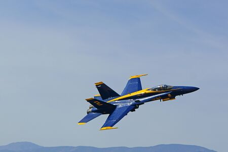 f18: Airplane F-18 Hornet Navy Blue Angels