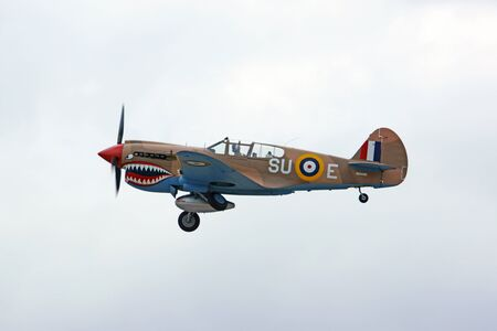 dog shark: Airplane vintage WWII P-40 Warhawk flying