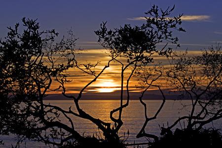 Sunset at park in Laguna Beach, California
