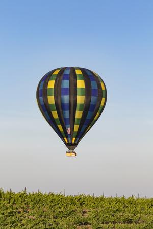 Hot air balloon flying over grape vineyard at California winery