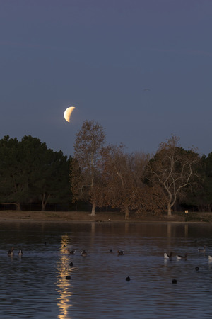 Moon eclipse over Los Angeles park lake