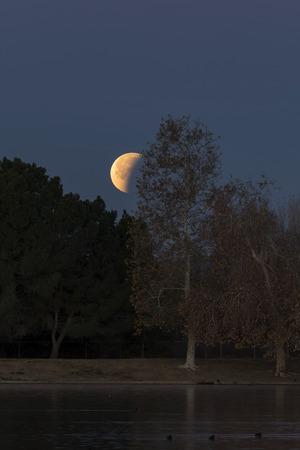 Moon eclipse at Los Angeles park