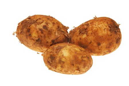 unwashed: Three unwashed new potatoes isolated on white