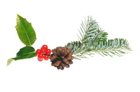 christmas motif: Holly,pine cone and leaves as a Christmas motif Stock Photo