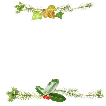 Christmas frame with holly ivy and pine leaves photo
