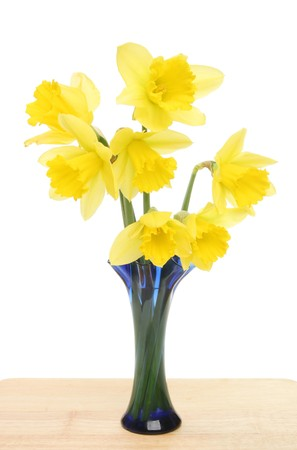 Daffodil flowers in a blue fluted vase on a wooden surface photo