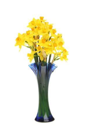 soleil: Small Soleil daffodil flowers in a blue glass vase Stock Photo