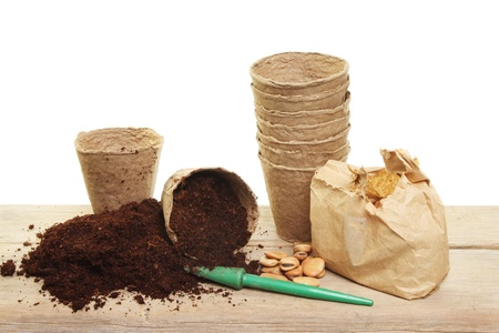 Seed planting, fiber pots, broad bean seeds and compost on a wooden bench Stock Photo - 12423157