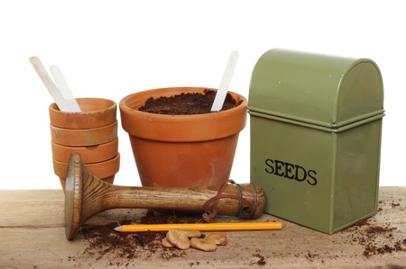 seed pots: Garden potting bench, pots, seeds, tamper and seed tin on a wooden bench
