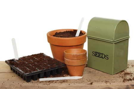 seed pots: Seed cell planting tray, pots and a seed tray on a wooden bench