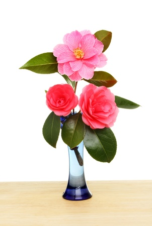 Camellia flowers and foliage in a vase on a wooden surface