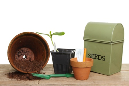 Garden potting bench, pots tools compost and a plant seedling on a wooden bench photo
