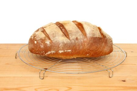 bloomer: Freshly baked bloomer loaf on a cooling rack  Stock Photo