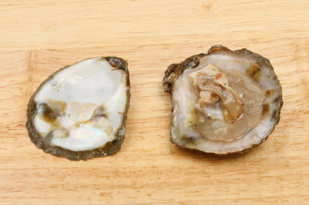 shucked: Opened fresh oyster on a wooden board