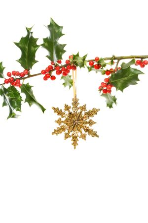 bough: Gold glitter Christmas star hanging from a Holly bough with red berries against a white background