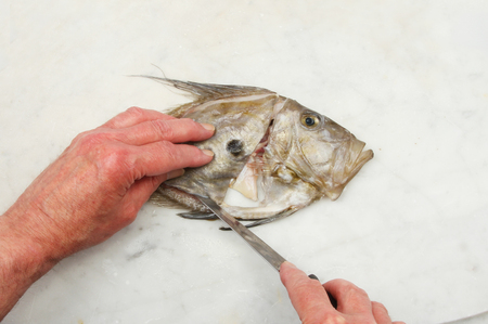 filleting: Hands filleting a John Dory fish on a marble slab