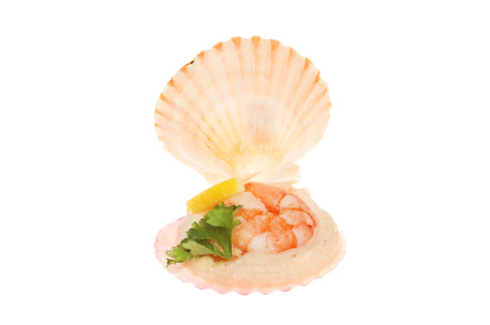 Mini seafood shell, King prawn and prawn mousse appetizer isolated against white