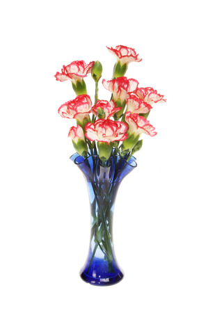 Red and white carnations in a blue fluted glass vase isolated against white Фото со стока
